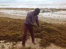 Tourism Ministry, National Tourist Board clean Lumley Beach
